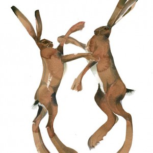 MAR_Boxing_hares