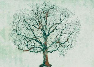 H.B_Tree_collograph