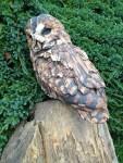 Stoneware Tawny Owl