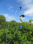 Stainless steel swallow sculpture