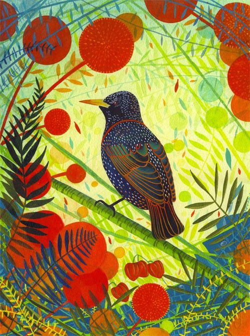 Giclee Print 'Starling'