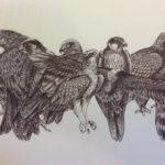 Biro Original drawing