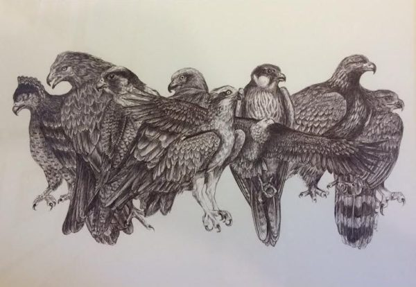 Biro Original drawing
