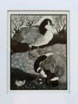 Original Scraper-Board Canada Geese