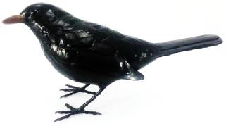 Bronze Blackbird Sculpture