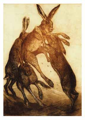 Limited Edition Etching 'Boxing Hares'