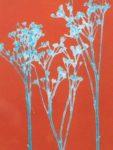 Coloured Monoprint - Dropwort in turquoise & orange