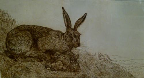 Limited Edition Etching Hare and Leverets on Hillside