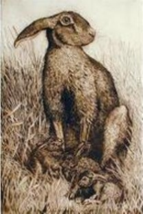 Limited Edition Etching Hare and Leverets