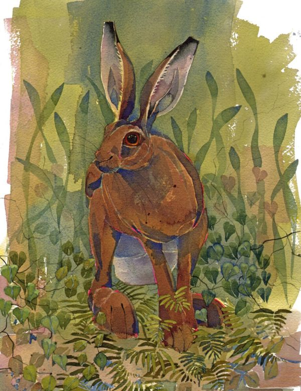 Original watercolour Sitting Hare