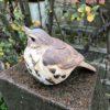 Stoneware Thrush Sculpture