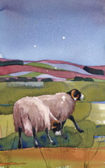 Original watercolour 'Ewe Two'