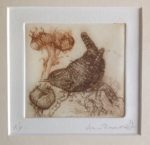 Limited Edition Etching Wren and Seedheads