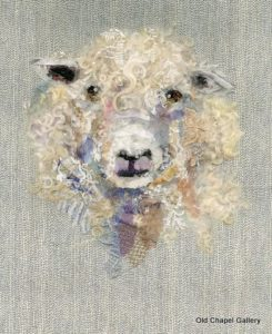 BS_cotswold_sheep