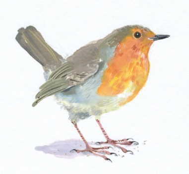 Original Watercolour Robin