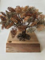 Unique Wire Acacia Tree