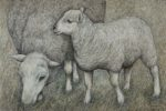 Original pen & ink 'Ewe and Lamb'