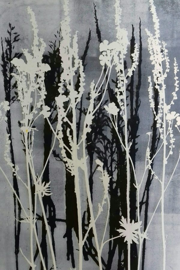 Colour Mono-print   Meadow Plants ll