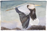 The Lost Words Limited Edition Print Heron In Flight