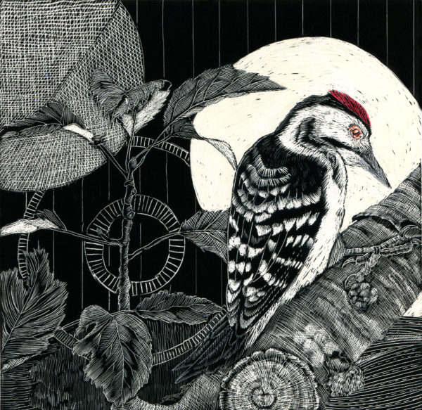 Original Scraper-Board Woodpecker