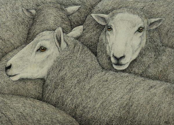 Original pen & ink 'Flock'