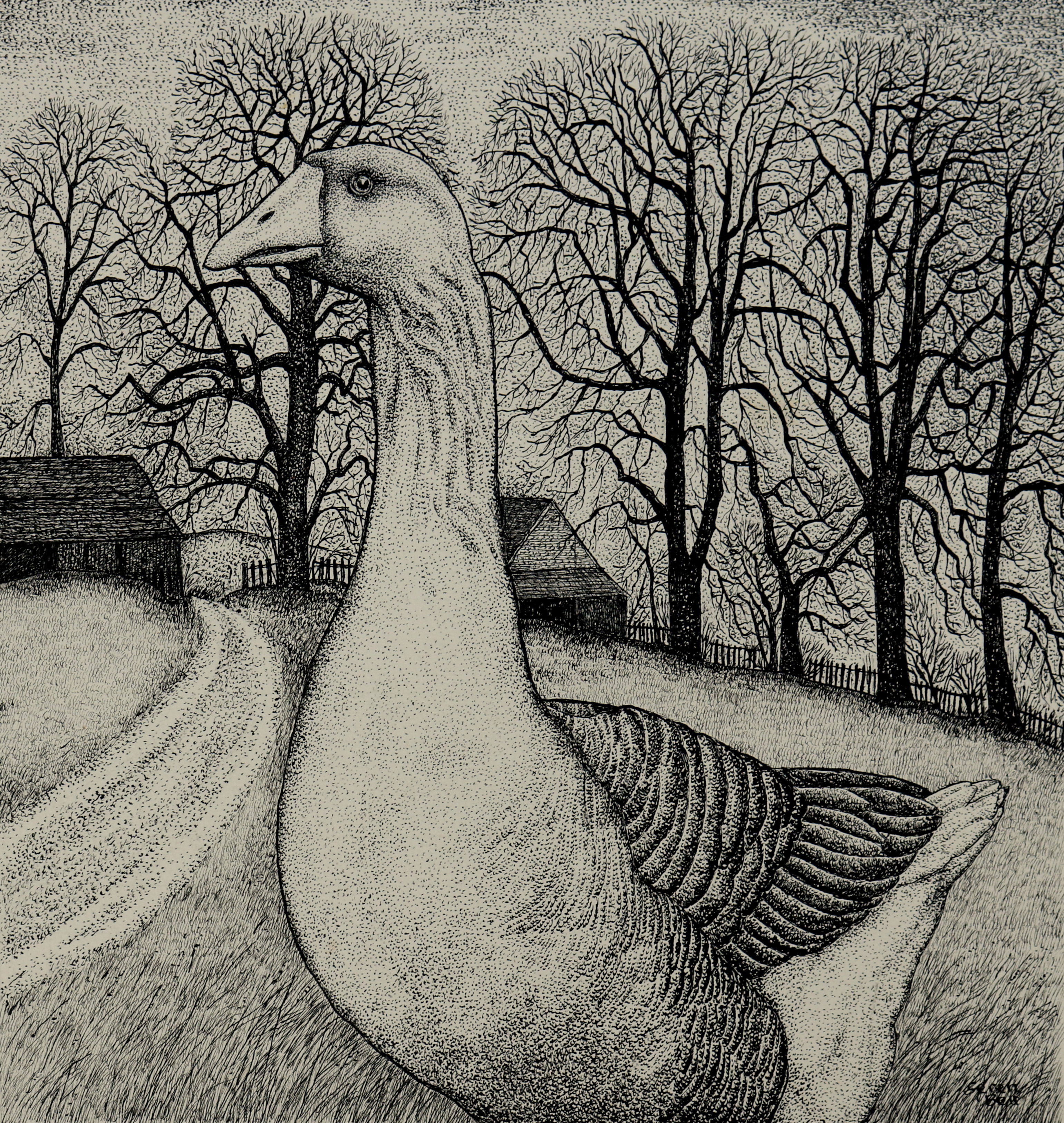 Original pen and ink 'The Goose'