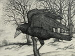 Original pen and ink  'The Rook'