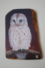 Hand Painted Olive Wood Panel  'The White Owl'