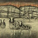 Original pen, ink and coloured pencil 'Jacob Sheep'