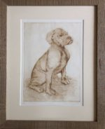 Limited Edition Etching  Boxer Pup