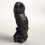 Bronze Perching Owl