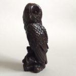 Bronze Perching Owl
