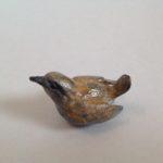Bronze Tiny Wren