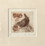 Etching Wren and Seedheads