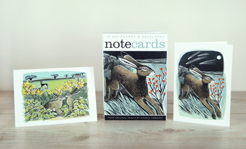 Note Cards Shooting Stars andLook Out!