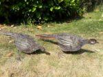 Forged Iron Pheasants