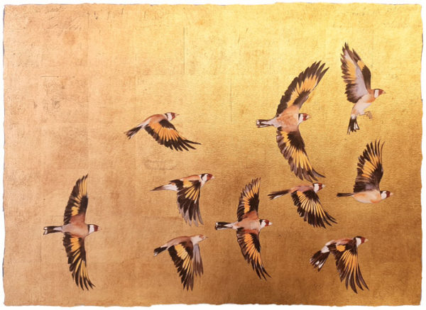 """Premium Print """"A Charm of Goldfinches"""""""