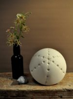 White Porcelain Sea Urchin Table Lamp