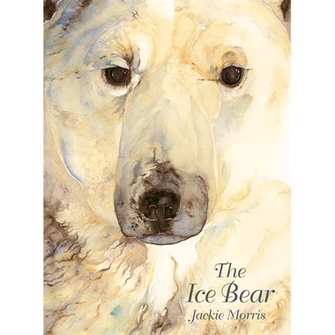 'The Ice Bear' Book