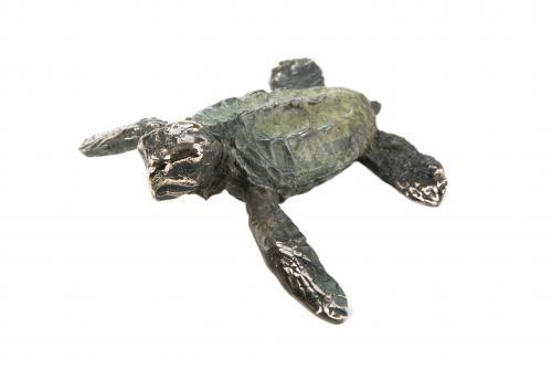 Bronze Small Turtle