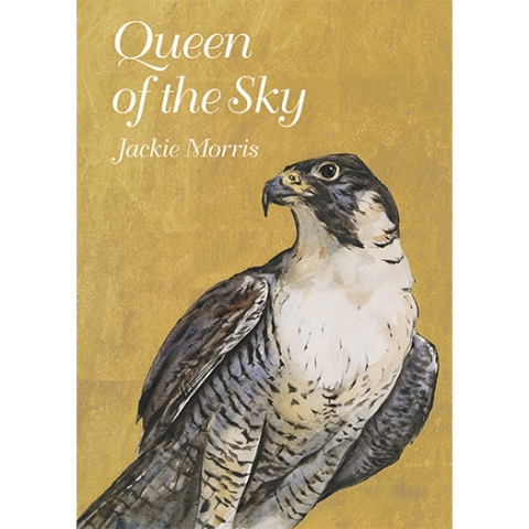 Queen of the Sky by Jackie Morris.