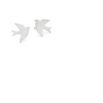 Silver Swallow Studs Tiny