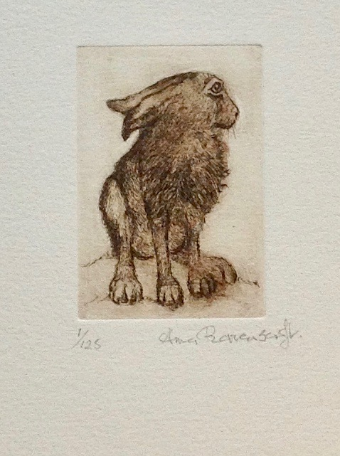 Hare Waking Up Etching
