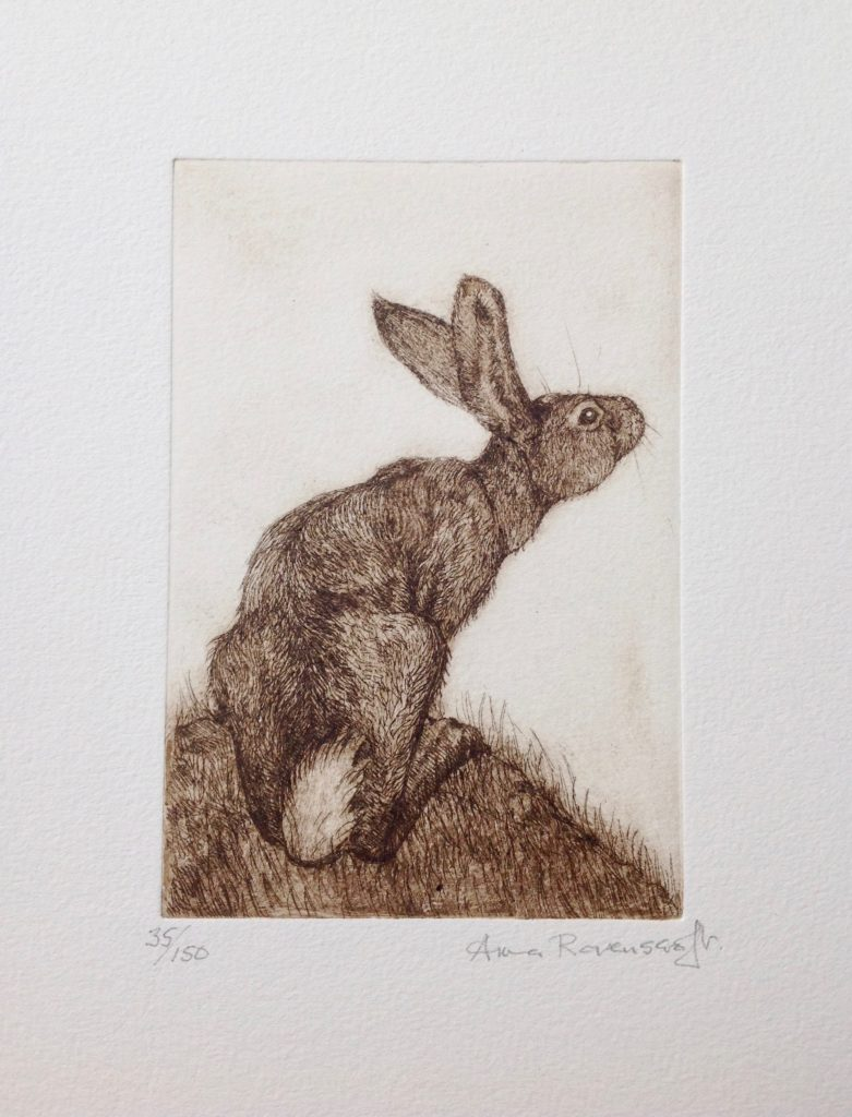 Hare Looking Up Etching