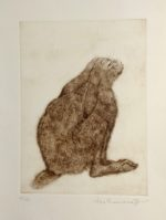 'Young Hare' Etching