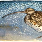 The Lost Spells – Curlew