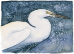 The Lost Spells – Little Egret