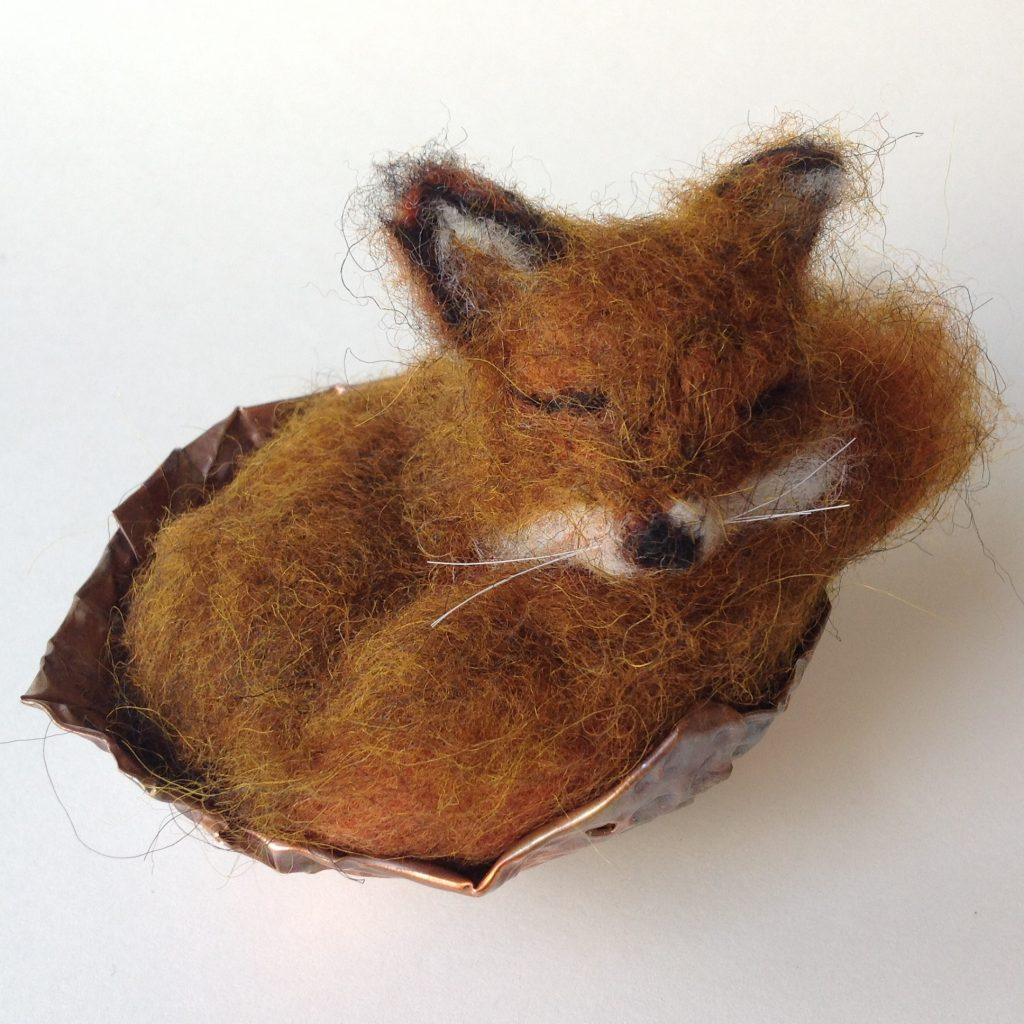 Coracle Sleepy Fox