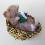 'Mouse Basket & Green Book'